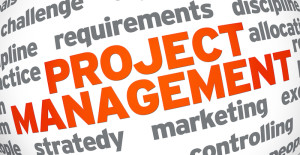International development services Project Management
